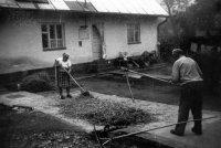 mlátenie obilia doma na dvore - rok 1979