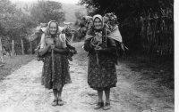 aj takto sa nosili listy z kŕmnej repy, ľudovo nazývané rumpľanka, ktoré sa používali na kŕmenie prasiatok i hydiny