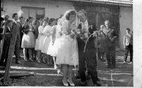 svadby