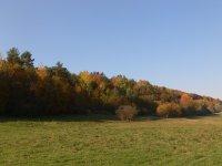 jeseň Pod Dlhým poľom