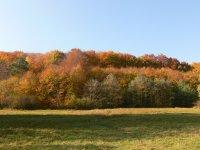 jeseň v Košariskách