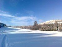zimná krása 12.1.2013