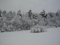 zimná krása Pod Dlhým poľom 7.2.2013