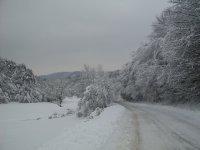 zimná krása za dedinou smerom na Šarišské Čierne 8.2.2013