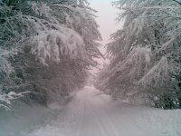 zimná krása  za dedinou smerom na Ciglu oproti Lužku 8.2.2013