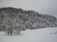 zimná krása v Lužku 8.2.2013
