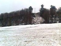 dlhá zima zaskočila aj zvieratá, tento premrznutý bocian sa naží dostať k potrave 9.4.2013